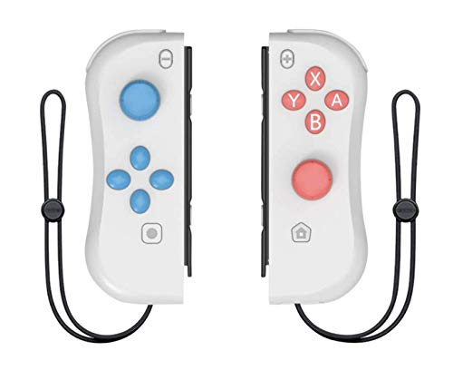 Switch Wireless Controller Joypads Chasdi. Pair of Remote Motion Controllers with Micro USB Charging Cable & Joy-Con Alternative Compatible with Nintendo Switch (Grey)