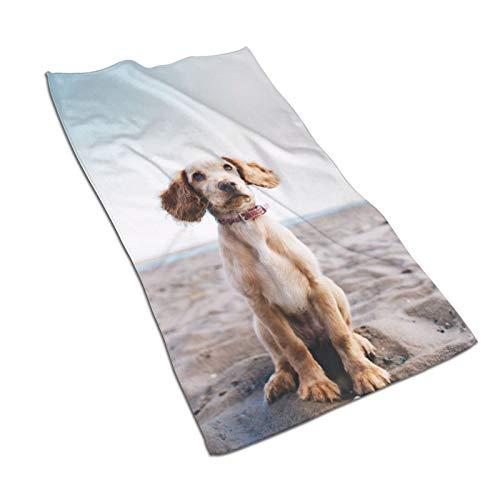 Toallas de baño para cachorros de secado rápido de alta calidad de absorción súper suave de algodón para baños piscinas y cocinas de hotel (30,5 x 60,5 cm)