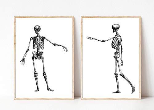 Din A4 Kunstdruck ungerahmt 2-teilig Anatomie Skelett Mensch Knochen Gothic Vintage Medizin Arzt Druck Poster Bild