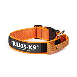 Julius-K9 Color & Gray Collar with Handle, Safety Lock and Interchangeable Patch, 40 mm (38-53 cm), Orange-Gray
