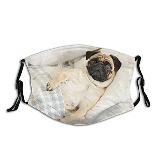 Cara de tela unisex de Ma-sk perro carajo cama debajo de la manta Animales Vida Silvestre Cara Co-ver con ajuste de bucle de oreja, lavable Mou-th cubierta para exteriores, deportes, ir de compras