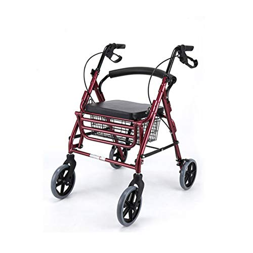 XIALIUXIA Rollstuhl Und Rollator in Einem/Leichtgewichtrollator Faltbar/Mit Stockhalter/Korb Und Rückenbügel/Pannensichere PU Bereifung