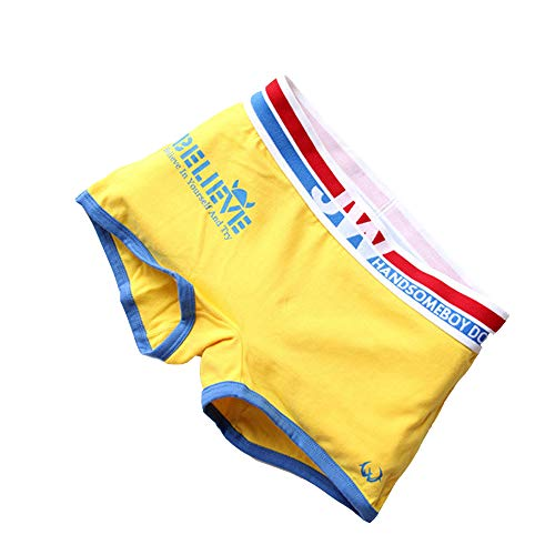 BaronHong Sports Cotton Boyshort 3 Pack Boxer Briefs for Tomboy Trans Lesbian(Yellow,2XL)