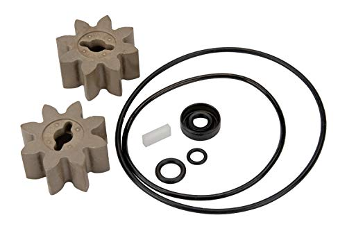 GPI Overhaul Kit for EZ-8 Fuel Transfer Pump Manufactured on or Before Jan. 8, 2016, Motor Shaft Key, Two Gears, and Replacement Seals (GPI Genuine Part 13750005)
