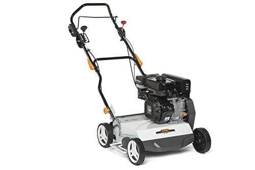 Alpina 211400242/16 SC 40 g Gasolina Escarificador, 4000