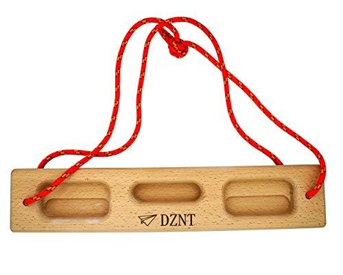 DZNT Portables Hangboard || mobiles Trainingsboard || Fingerboard || Transportables Griffboard Klettertraining