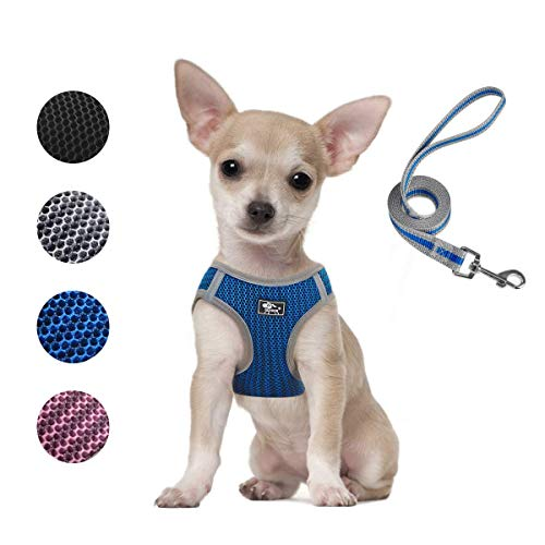 Dog and Cat Universal Harness with Leash - Cat Harness Escape Proof - Adjustable Reflective Step in Dog Harness for Small Dogs Medium Dogs - Soft Mesh Comfort Fit No Pull No Choke (XS, Blue)