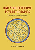 Image of Unifying Effective Psychotherapies: Tracing the Process of Change