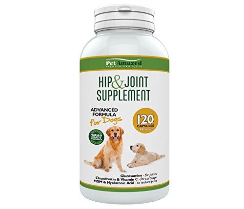 PetAmazed Neu Hund-Gelenke-Nahrungsergänzung – 120 Kapseln – Glucosamin HCL, Chondroitin, MSM, Vitamin C & Hyaluronsäure – Gelenkmittel für Gelenkprobleme, Arthrose, Hüftdysplasie, mehr Beweglichkeit