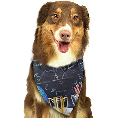 Hipiyoled Gleichung (5) Dog Cats Triangular Bandage Bib Neckerchief Collar Scarf