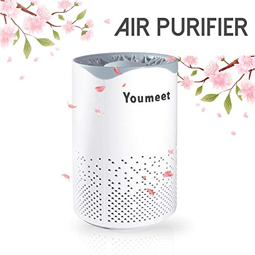 Best Buy! Air Purifier,Youmeet Air Cleaner with Night Light,Low noise Portable Air Filter,USB Mini Air Purifier for Home,Classroom,Dorm Room,Allergies,Pets,Car,Bedroom,Office,Smoke,Desk
