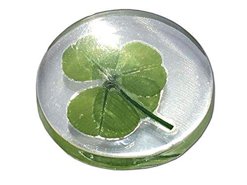 Vero trifoglio a quattro foglie, gettone tascabile di buona fortuna, conservato, 3,2 cm