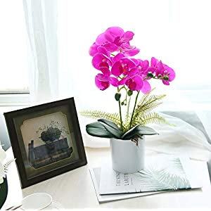 U'Artlines Artificial Orchid in White Pot Fake Phalaenopsis Flower Real Touch with Vase for Table Office Home Party Decoration