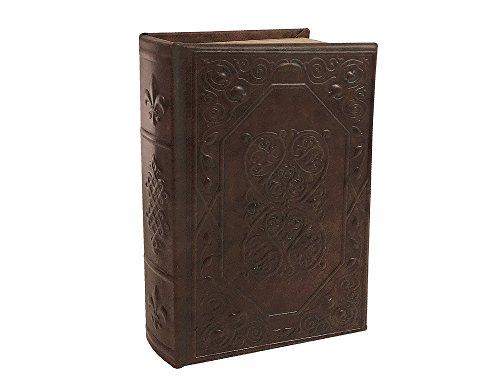 zeitzone Hohles Buch mit Geheimfach Geldkassette Abschließbar Safe Lilie Antik-Stil 24cm