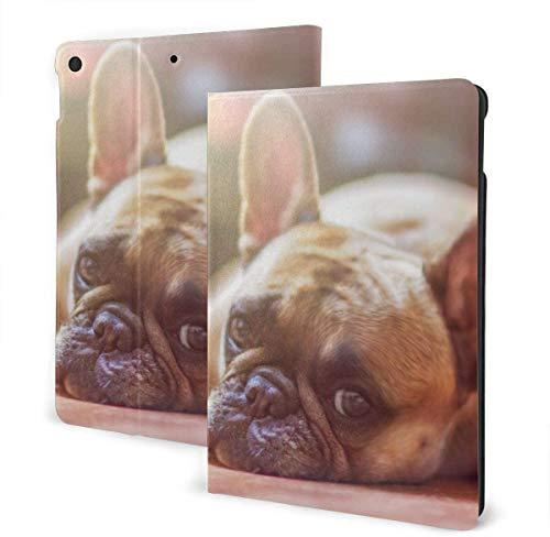Funda Catfish para Nuevo iPad 7a generación de 10,2 Pulgadas 2019 con visualización de múltiples ángulos Folio Smart Stand Cover Auto Wake / Sleep para iPad 10,2 'Tablet-French Bulldog Love-One Size