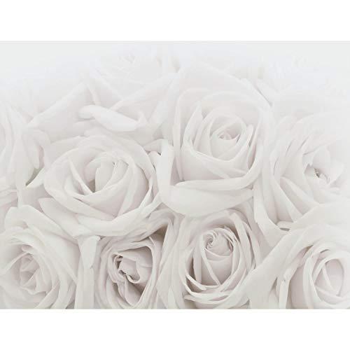 Fototapeten 396 x 280 cm Blumen Rosen | Vlies Wanddekoration Wohnzimmer Schlafzimmer | Deutsche Manufaktur | Grau 9258012c