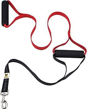 Hundefreund Laisse à Double poignée pour Plus de sécurité avec Les Grands Chiens | 2 poignées pour Un Dressage et Un entraînement des Chiens idéal (Rouge)