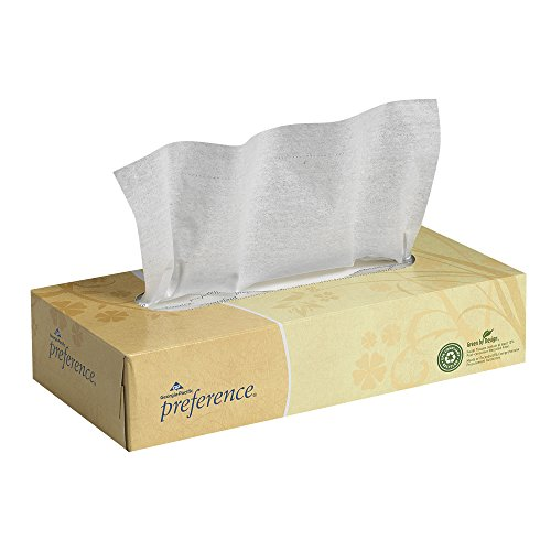 Preference 2Ply Facial Tissue by GP PRO GeorgiaPacific Flat Box 48100 100 Sheets Per Box 30 Boxes Per Case