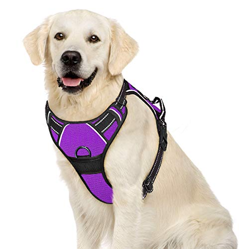 IPETSZOO Dog Harness No Pull Dog Harness for Large Dogs with Handle Adjustable Outdoor Pet Vest 3M Reflective Oxford Material Vest for Dogs Easy Control for Small Medium Large Dogs(Purple,L)