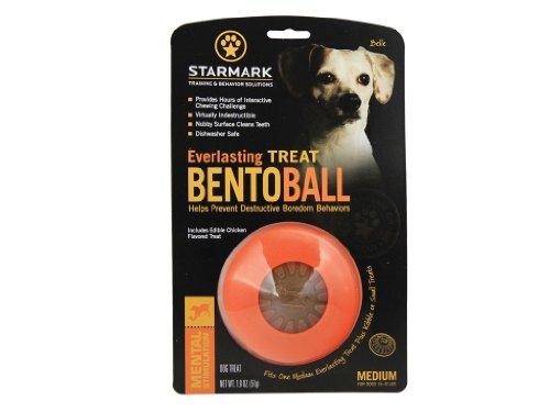 Starmark Everlasting Treat Bento Ball Tough Dog Chew Toy Medium