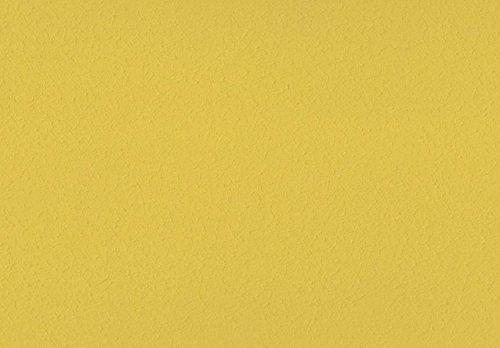 Volvox Espressivo Lehmverf, bonte tinten 3, 2,5 liter, 20 m2 Mosterd   259