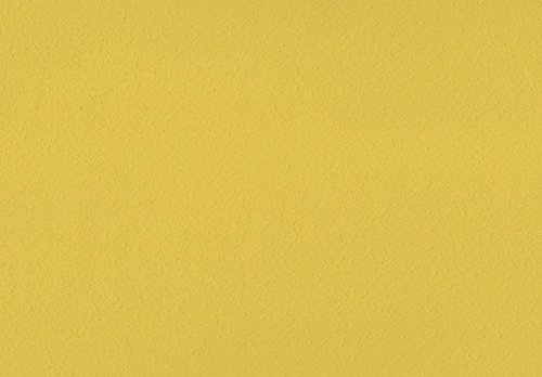 Volvox | Espressivo Lehmfarbe | Bunttöne 3 | Biofarbe | 2,5 Liter | 20 m² (senf | 259)