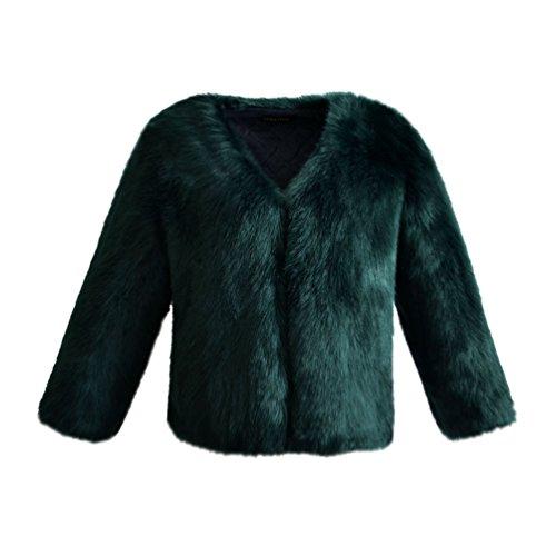 YuanDian Donna Autunno E Inverno Casuale Colore Solido Corto Sintetica Pellicciotto Ecologico Elegante Morbido Caldo Giacca di Finta Pelliccia Cappotto Verde Scuro M
