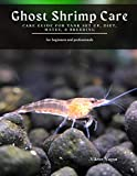 Ghost Shrimp Care: Care Guide For Tank Set up, Diet, Mates, & Breeding
