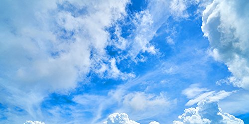 Cloudscape - 2ft x 4ft Drop Ceiling Fluorescent Decorative Ceiling Light Cover Skylight Film