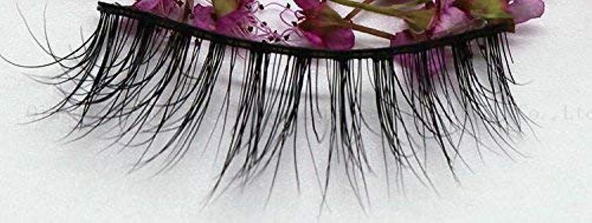 同種の心のこもった残忍な3D自然な 高級ミンクつけまつげ 全く天然なミンク毛で手作り 収納ケース付け SA16