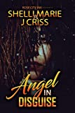 Angel in Disguise (Standalone): Blood, Tears and Redemption
