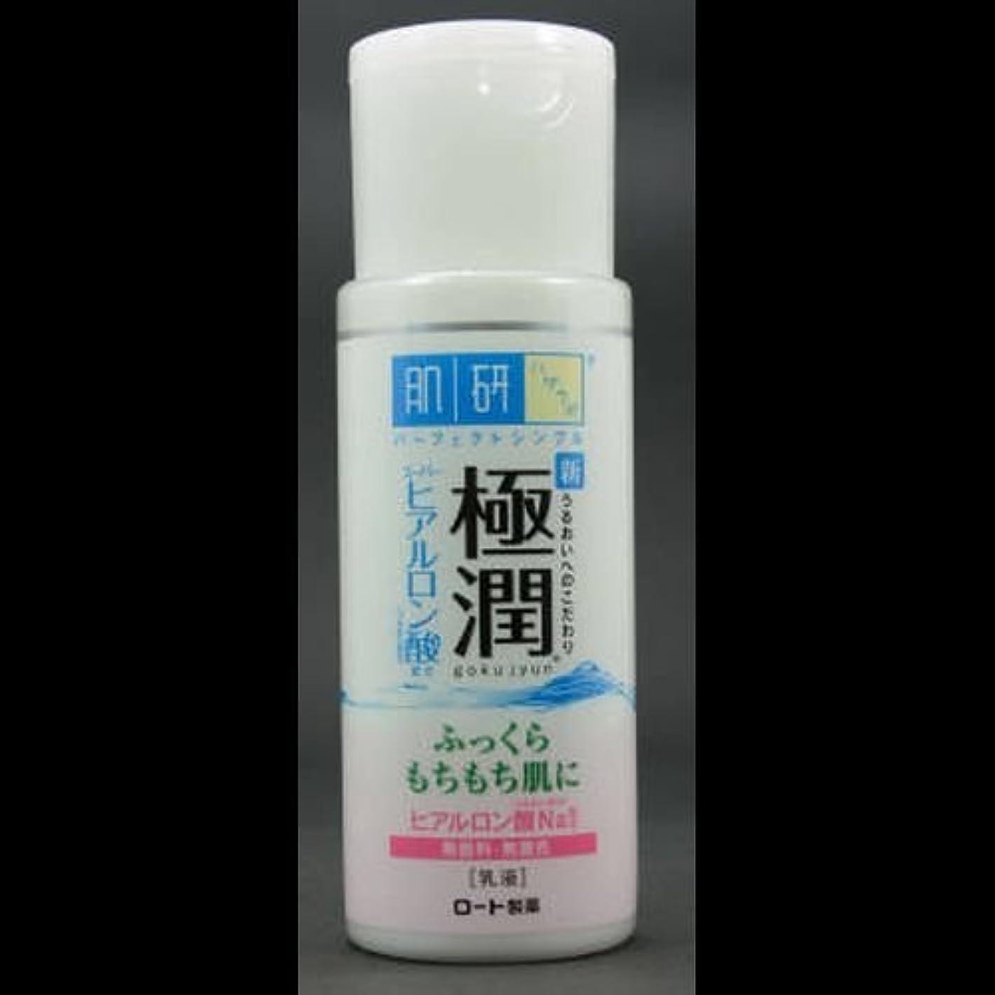 スーパーボイコットフォロー【まとめ買い】肌研 極潤 ヒアルロン乳液 140mL ×2セット