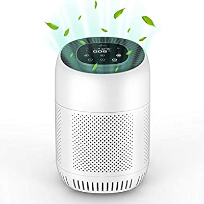 ICETEK True H13 Personal Air Purifier With 4 Stage Filtration and Activated Carbon Filter...