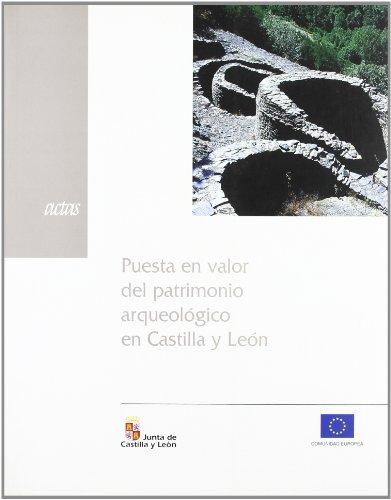 PUESTA EN VALOR PATRIMONIO ARQUEOLOGICO CASTILLA Y LEON