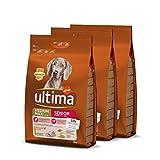 Ultima pienso para Perro Medium-Maxi Senior con pollo, pack de 3 x 3 kg -...