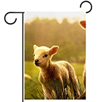 春夏両面フローラルガーデンフラッグウェルカムガーデンフラッグ(12x18in)庭の装飾のため,赤ちゃん羊