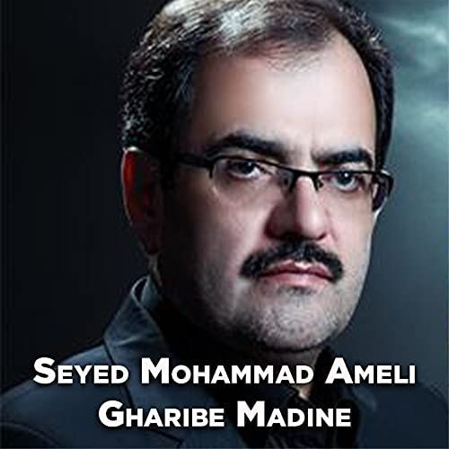 Seyed Mohammad Ameli
