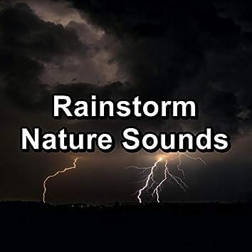 Rainstorm Nature Sounds