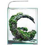 AQUAEL 122977 Shrimp Set Day&Night 10 - Set de Gafas de Sol (3,26 kg), Color Blanco