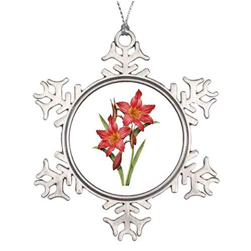 Monsety Amaryllis, Tropische Amaryllis, Weihnachtsdekoration, Weihnachtsdekoration, Weihnachtsdekoration, Weihnachtsbaumschmuck, für den Außenbereich
