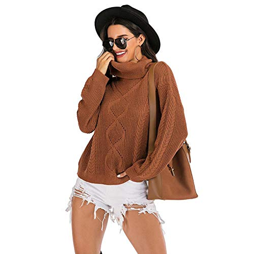 QXPORV gebreide trui voor dames met lange mouwen sweatshirt lente en herfst vrouwen dikke rolkraag twist gebreide trui bovenkleding mode eenvoudige pullover los luchtige wind