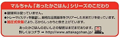 東洋水産 マルちゃん あったかごはん はえぬき使用 大盛250g パック250g