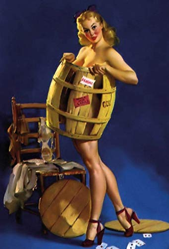 FS Pinup Girl in biervat blikken bord gewelfd Metal Sign 20 x 30 cm