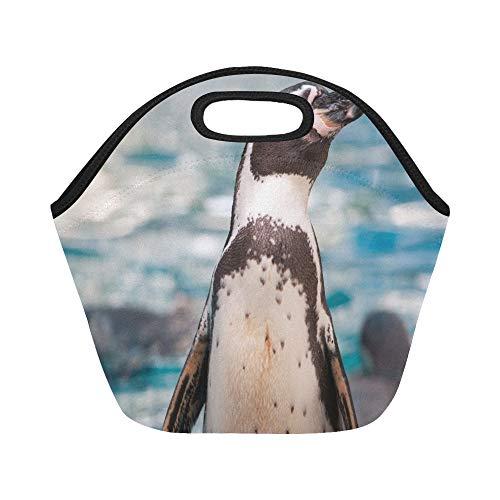Isolierte Neopren-Lunchpaket Schließen Niedliche Tierpinguine Humboldt-Pinguine Große wiederverwendbare thermische dicke Mittagessen-Tragetaschen für Lunch-Boxen für im Freien arbeiten, Büro, Schule