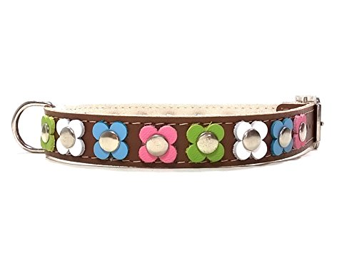 Superpipapo Hunde-Halsband, Handmade Braun Leder für Kleine und Mittelgroße Hunde, Vintage Design Floral mit Bunt Pastel Farbige Blumen, 40 cm S: Halsumfang 30-35 cm, Breit 15mm