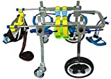 Quaz Four Wheels Adjustable Dog Wheelchair, cart,7 Sizes for Full Body Support, Fore-Leg Rehabilitation, Free Belly Band for Spine Protection, Free Leash (6. FF-L Size)