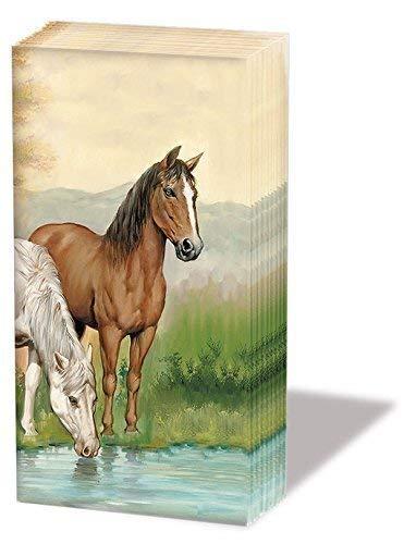 Ambiente zakdoeken 6 x 10 stuks zakdoekjes motief: Horses - Paarden aan zee nieuw motief
