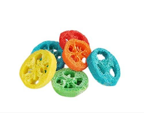 SHEENREAL 小動物おもちゃ 噛むおもちゃ 歯磨き カジカジおもちゃ 清潔 へちま玩具 ぬいぐるみ 運動不足、...