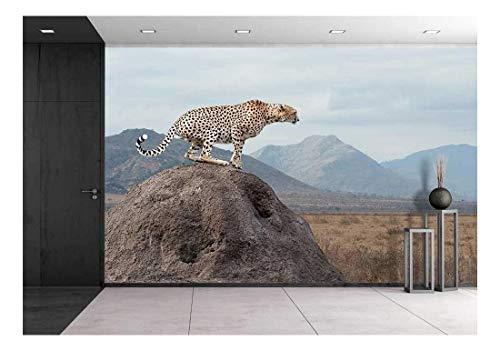 wall26 - Wild African Cheetah, Beautiful Mammal Animal. Africa, Kenya - Removable Wall Mural   Self-Adhesive Large Wallpaper - 100x144 inches