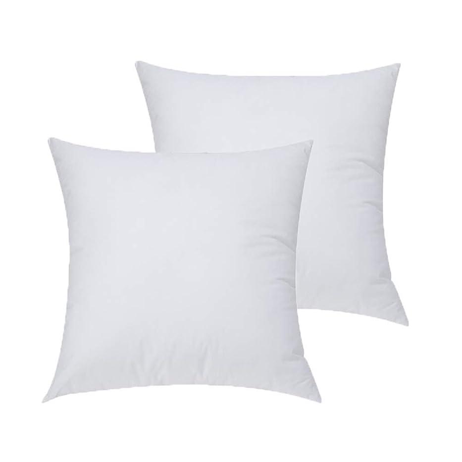 ランチョンポーター俳優WvvTee 2個セットヌードクッション クッション中材 立体7D綿 ソファ ベッド 背当てタイプ ホワイト 洗える 35x35CM 300g/pc